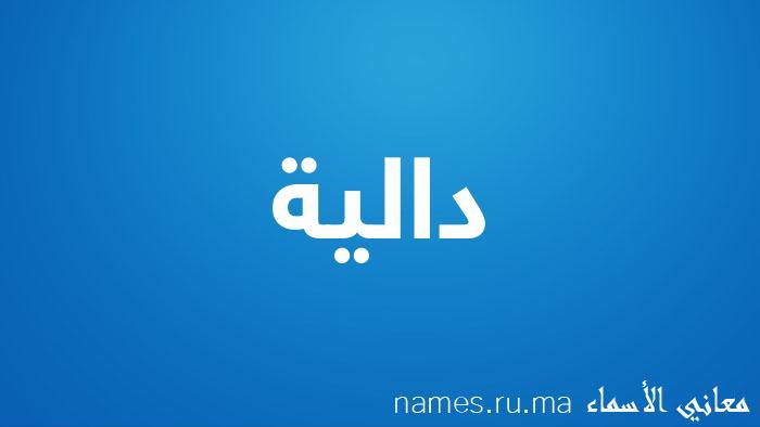 معنى إسم دالية