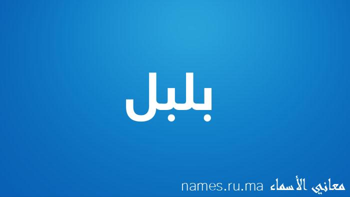 معنى إسم بلبل