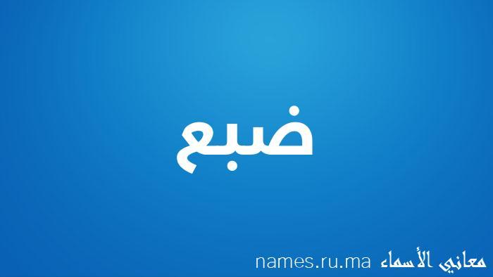 معنى إسم ضبع