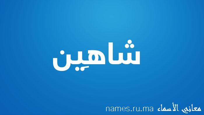 معنى إسم شاهِين