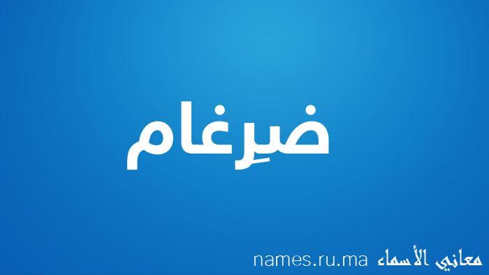 معنى إسم ضِرغام