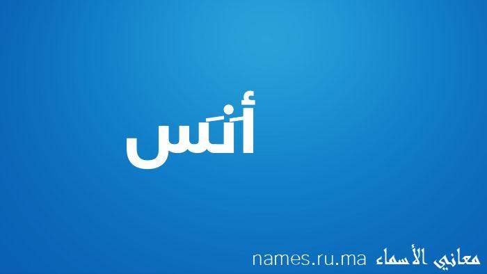 معنى إسم أَنَس