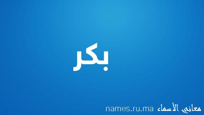 معنى إسم بكر