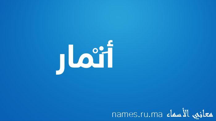 معنى إسم أَنْمار