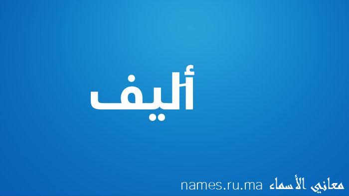 معنى إسم أَليف