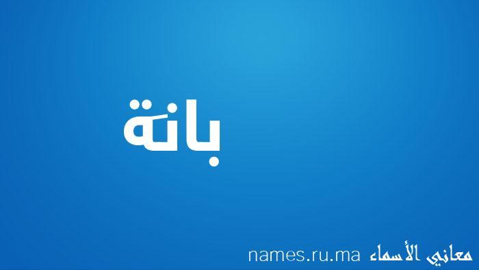 معنى إسم بانَة