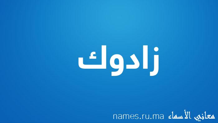 معنى إسم زادوك