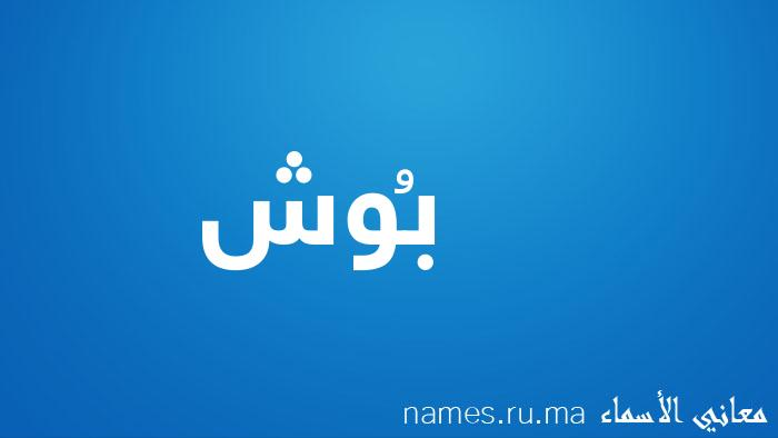 معنى إسم بُوش